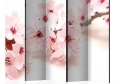 Paraván -  Cherry Blossom II [Room Dividers]